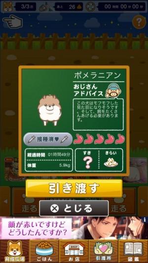 わんわんランド (5)