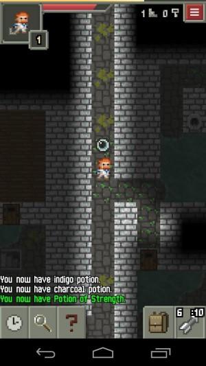 Pixel Dungeon (10)