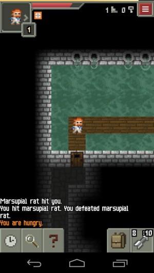 Pixel Dungeon (15)