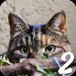 猫好きにはたまらない猫探しゲーム【猫を見つける2 をやってみた】