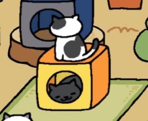 ねこあつめ、オレンジキューブ2