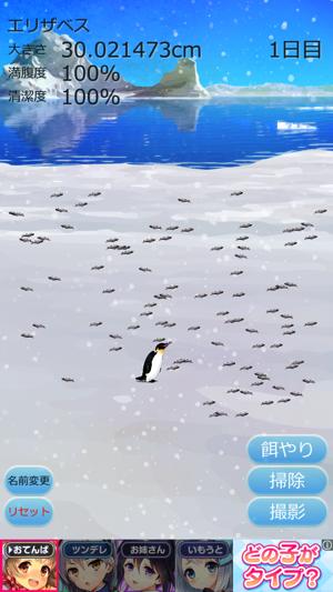 癒しのペンギン育成ゲーム11