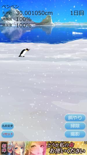 癒しのペンギン育成ゲーム7